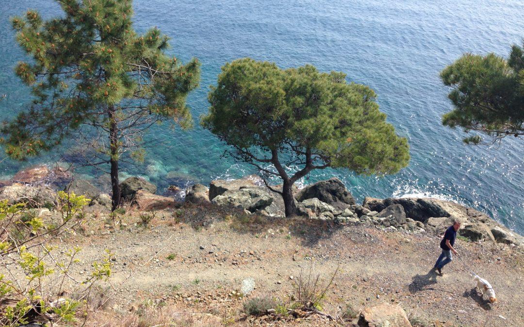 Vacanza alle Cinqueterre in Liguria, dove dormire