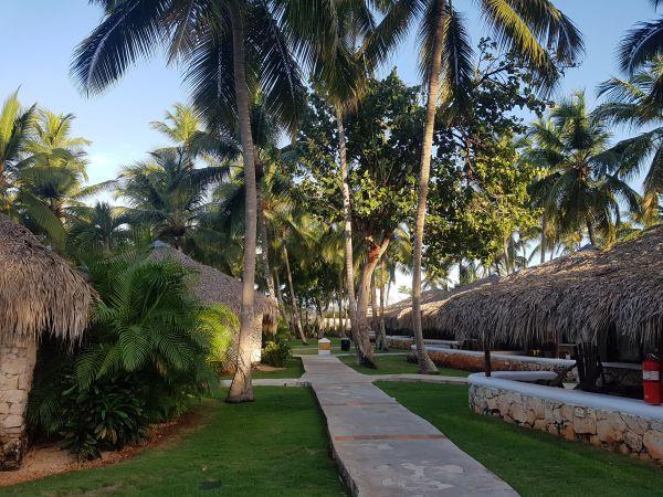 bungalow viva wyndham dominicus beach
