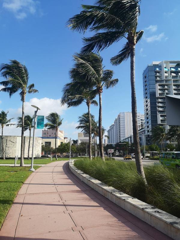 Collins Avenue Miami