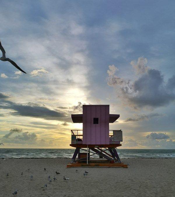 Vacanze studio a Miami, i 5 mesi più belli della mia vita