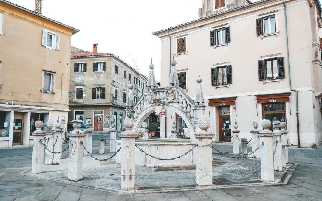 Tour della Slovenia in auto tra città, vigneti, spa e natura