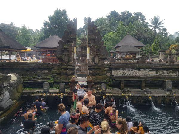 tempio della sacra sorgente Bali