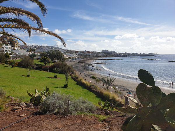 Vacanza a Tenerife a dicembre: clima, consigli utili e cosa aspettarsi